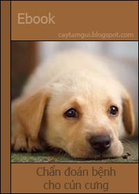 Ebook chẩn đoán bệnh cho chó dựa trên dấu hiệu và triệu chứng