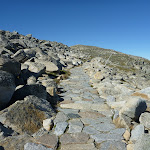 Rocky Path leading to Mt Kosciuszko (266228)
