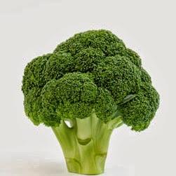 <b>Broccoli</b>