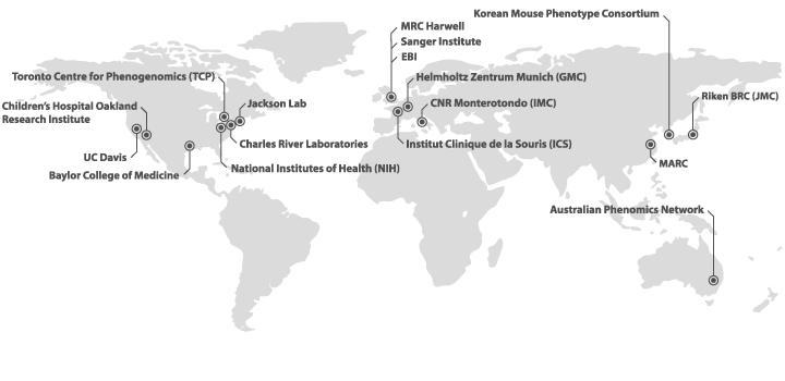 IMPC partner research institutes