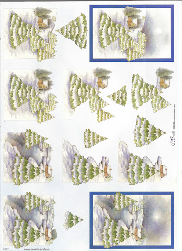 knipvel 11 (2).jpg