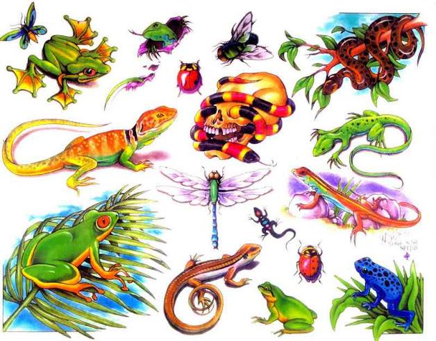 tatuaże jaszczurki,żaby ,gady
