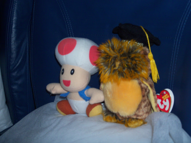 Toad and Smartest Owl on Delta Flight 260