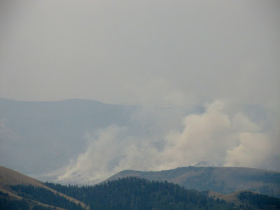 Smoke from back burn near Bob Wright Canyon
