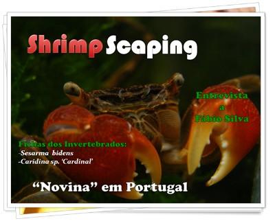 Revista Eletrônica ShrimpScaping 4