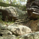 A short set of rock stairs at McComb Hill (5635)
