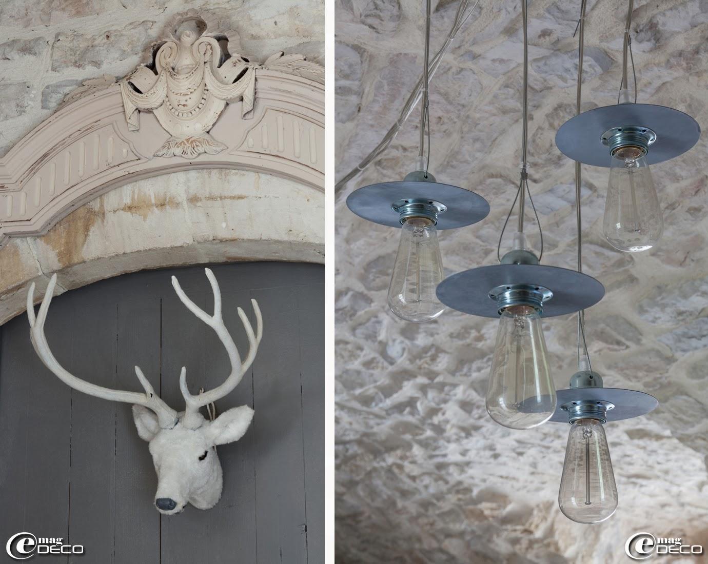 Trophée de cerf blanc 'Alinéa', suspensions en acier galvanisé 'Un esprit en plus'