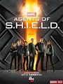 6d460001175bf9f2aec5a387cbcf8f65 Baixar Série Agents of SHIELD Legendado RMVB e AVI Legendado | 720p Download