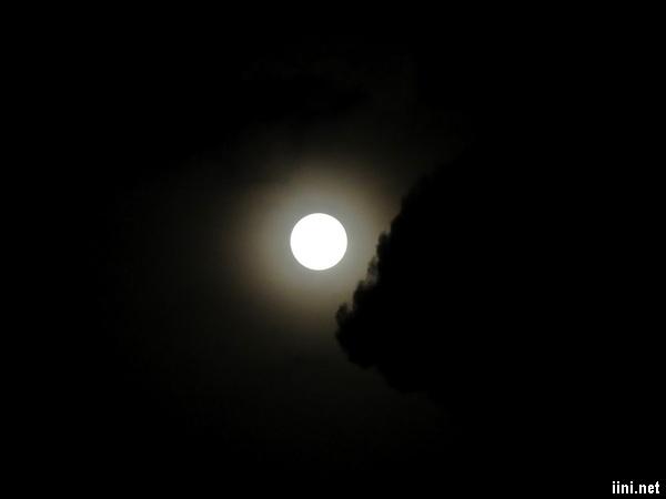 ảnh trăng đêm khuya