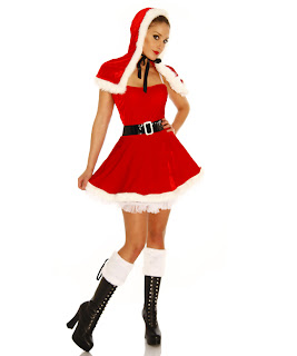 Miss North Pole Costume