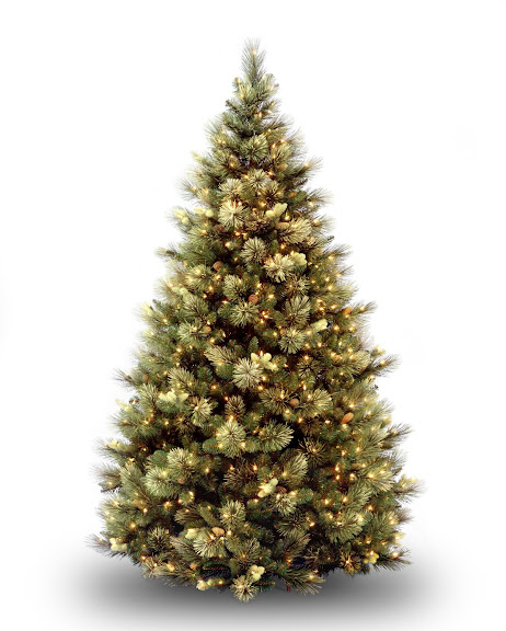 National Tree 7 1/2' Carolina Pine Tree, Hinged, 86 Flocked Cones, 750 Clear Lights (CAP3-306-75)