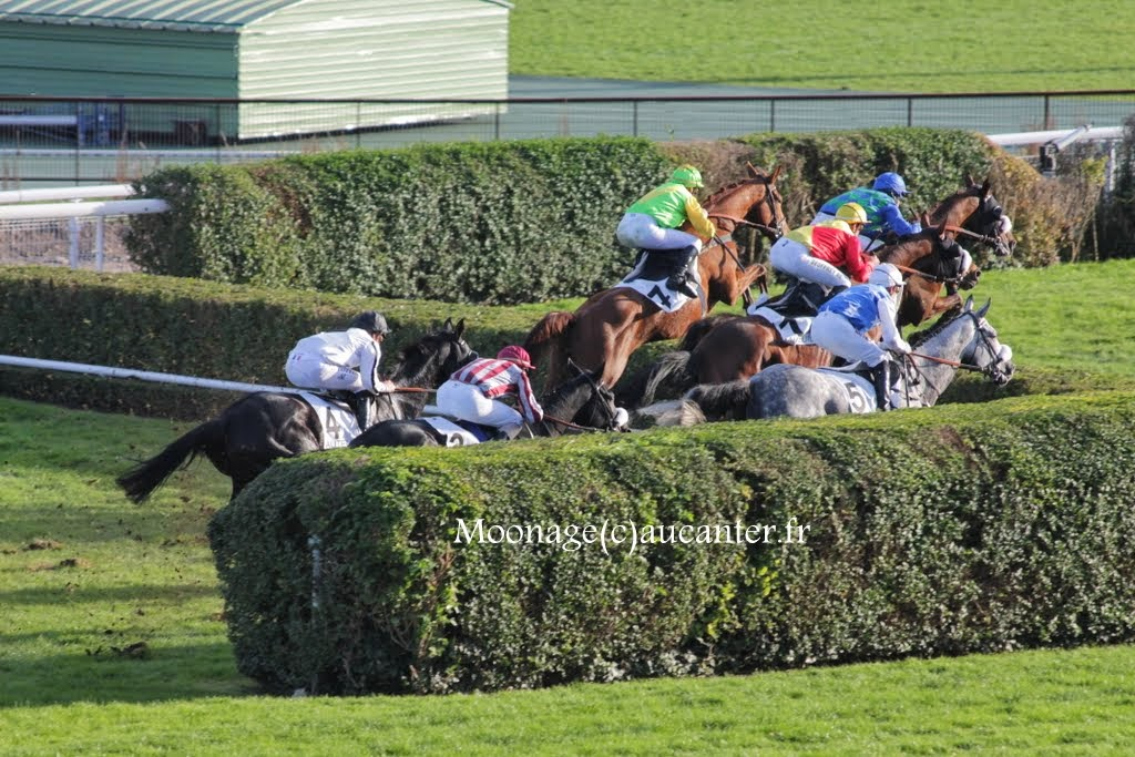 Photos Auteuil 2-11-2014 (48h de l'obstacle) IMG_5623