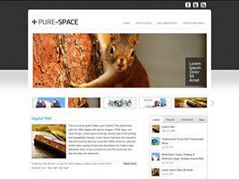Pure-Space WordPress Theme