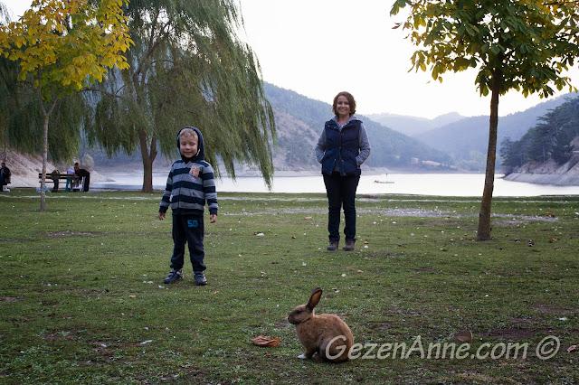 Sünnet Gölü yanındaki düzlük alanda tavşanları kovalarken