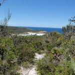Looking down to Frazer beach from the Grass Tree Track (249583)