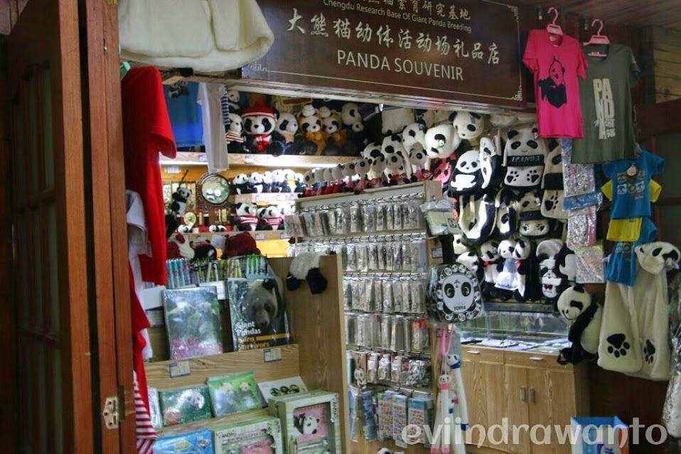 toko souvenir panda