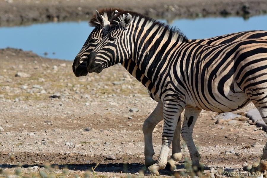 Namibia+2014_097.JPG