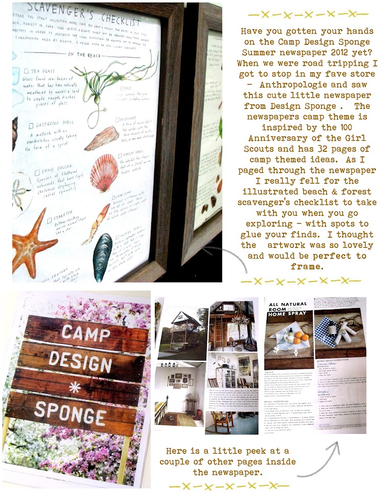 Pinecone: unique art - framing pages from Camp Design*Sponge