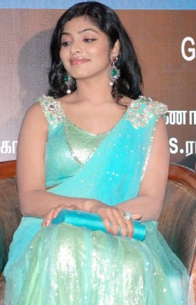 Rima Kallingal In Hot Saree(13pics):bollywood
