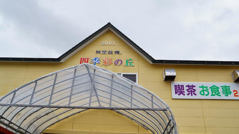 美瑛 四季彩の丘 写真1