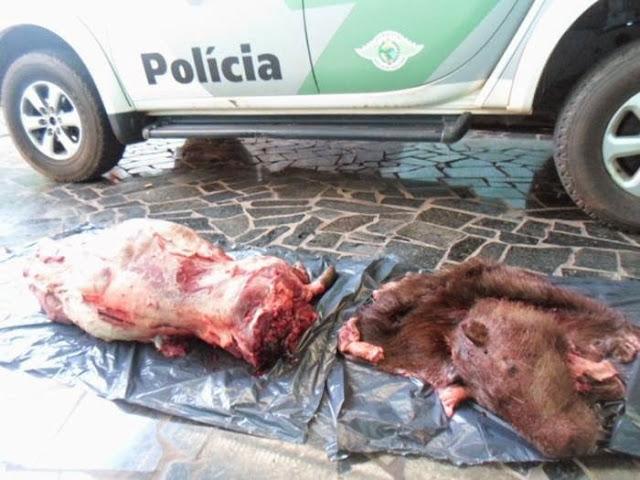 Homens são multados por caça animal em rancho de Santa Fé.