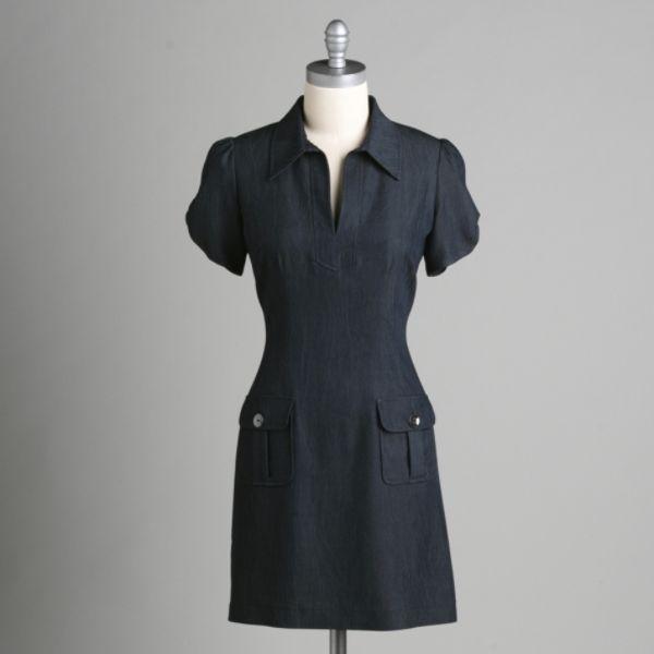 Mulberry Or Kmart Denim Dress X Kate Bosworth Shoppingandinfo