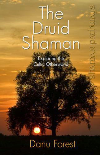 Review Shaman Pathways The Druid Shaman