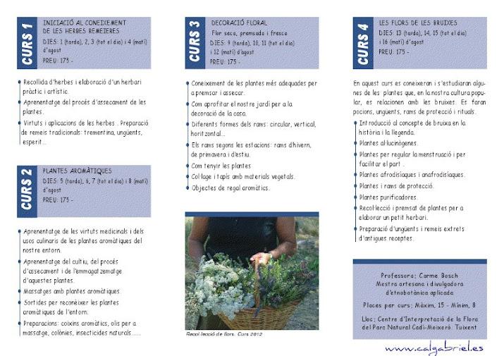 Cursos de flors a Tuixent, edició 2013