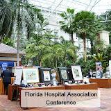 2011 FL Hospital Association Conference CSR Silent Auction by BestFundrasingPartner.com