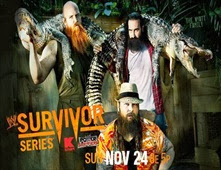 فيلم WWE Survivor Series 2013