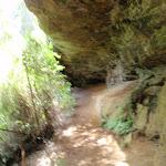 track heading under a long rock overhang (62372)