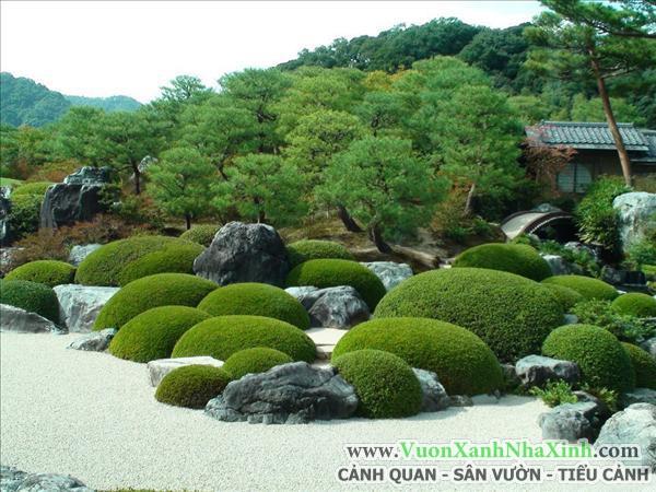 Vườn Tiểu Cảnh Nhật Bản _ www.VuonXanhNhaXinh.com 2