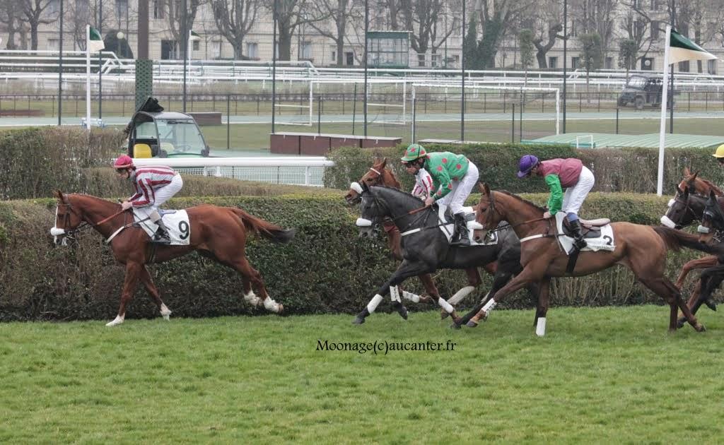 Photos Auteuil 14-03-2015 IMG_7297