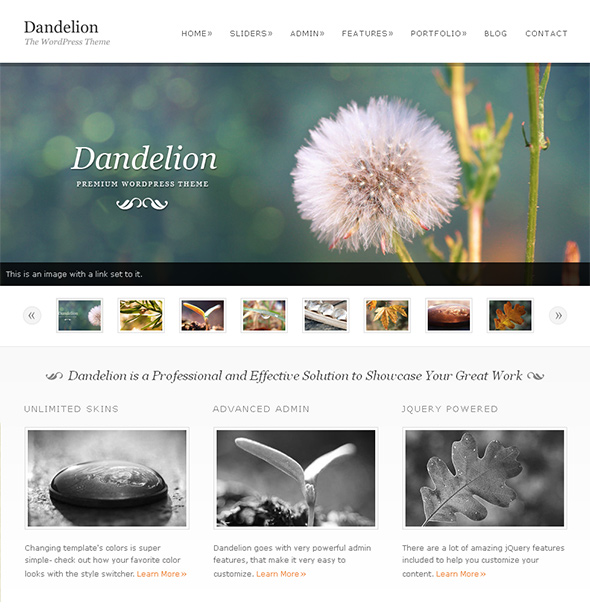 Dandelio Portfolio WordPress Theme for Wedding Photographers