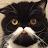 callum bankhead avatar image