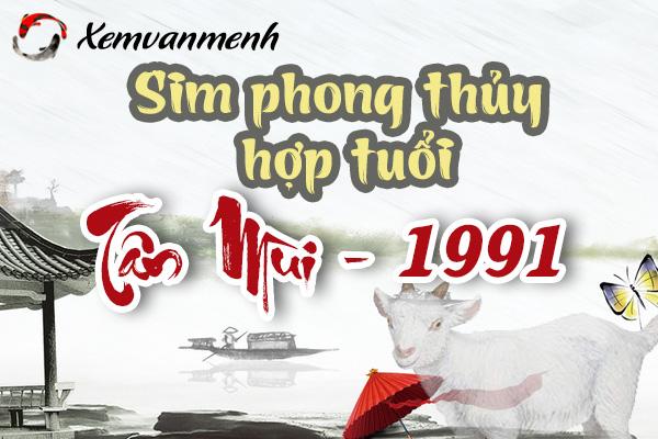 xem-sim-phong-thuy-hop-tuoi-tan-mui-1991