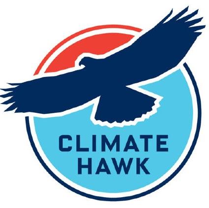 Hawk Logo Free Vector Art  382 Free Downloads  Vecteezy