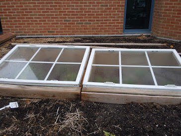 Cold Frames in February
