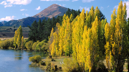Lake Wanaka, South Island, New Zealand.jpg