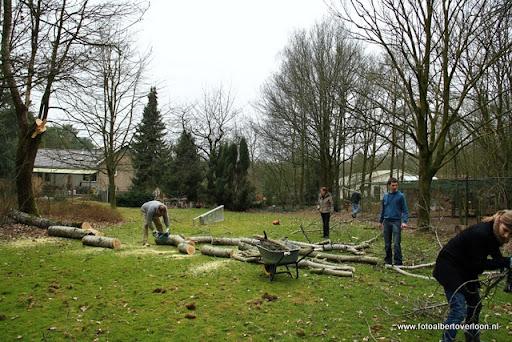 houthakkersmeewerkdag overloon 3-03-2012 (24).JPG