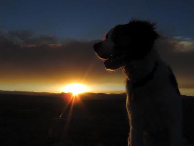 Torrey and sunset