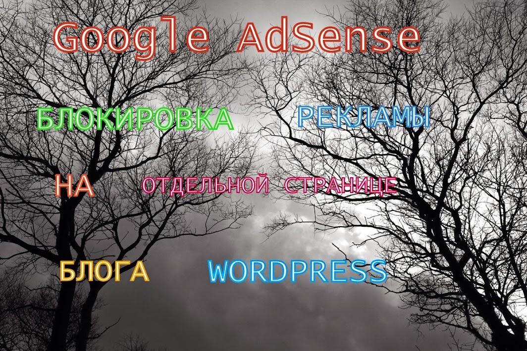 Блокировка рекламы Adsense на отдельной странице блога WordPress