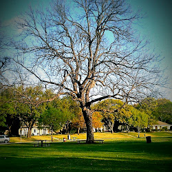 Prairie Creek Park's profile photo