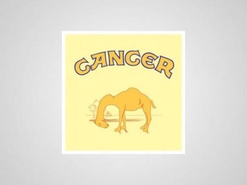 Camel anti-tabaco