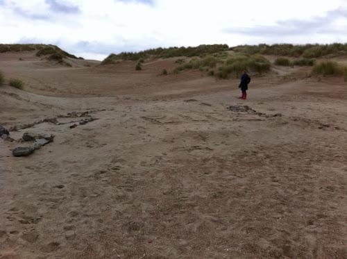 Dunes mer du Nord