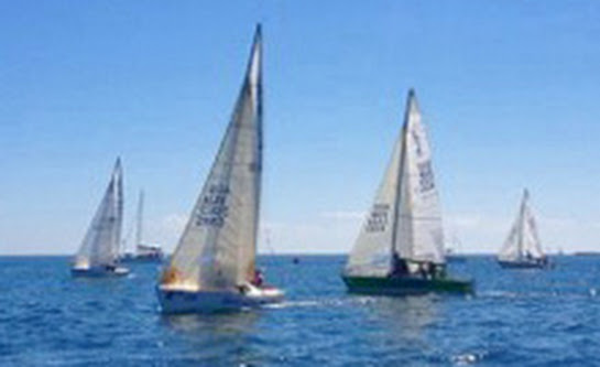 J/24s sailing upwind at South Australian States regatta