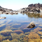 Rock pool at rocky beach (103066)
