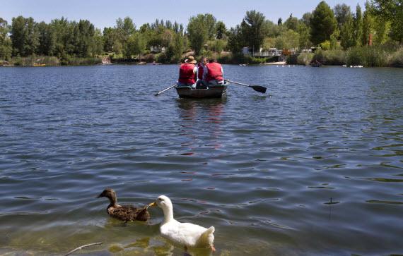 Recuperación de la Laguna de las Madres en Arganda de Rey
