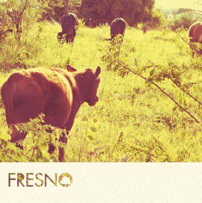 Free Download #22: Fresno – EP Cemitério das Boas Intenções