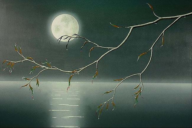 Ảnh ánh trăng đêm đông đẹp nhất